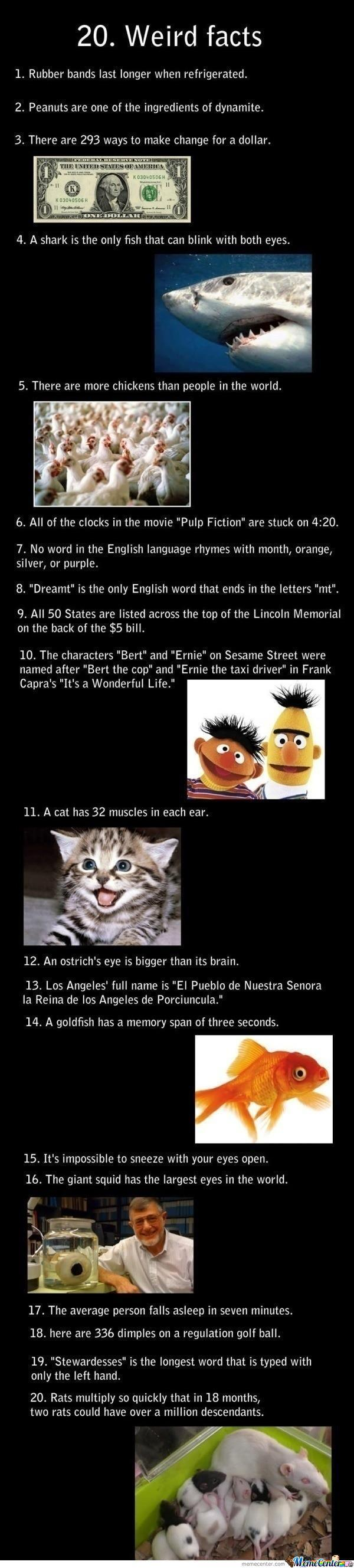 20 Weird Facts