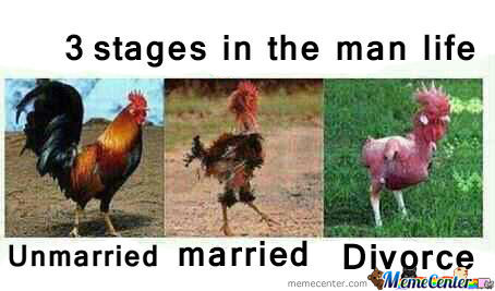 3 Stages In The Man Life