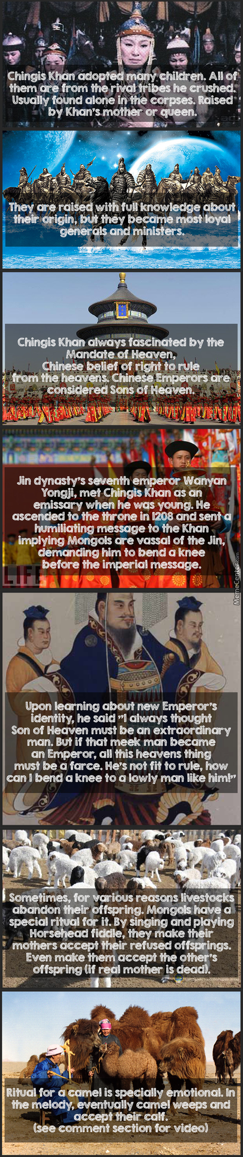 #31 Mongol Facts