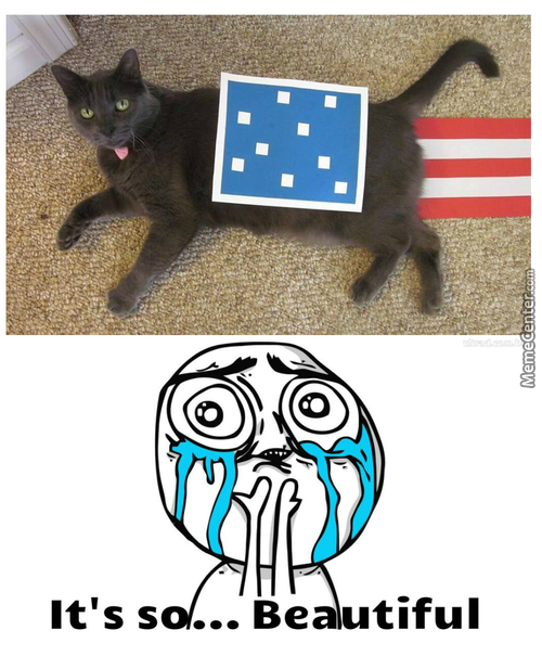 4Th Of July (Nyan Cat)