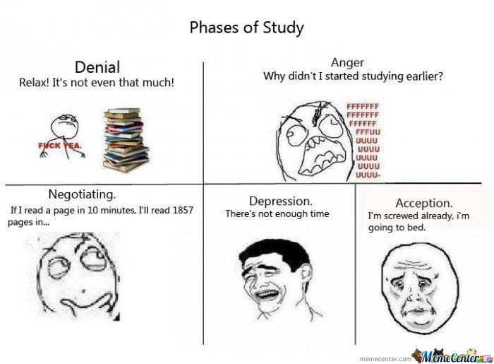 5 phases of study