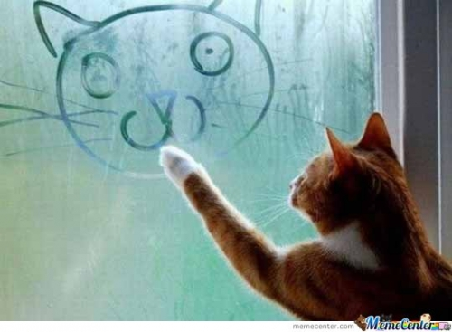 Cat Draws A Smiley Face