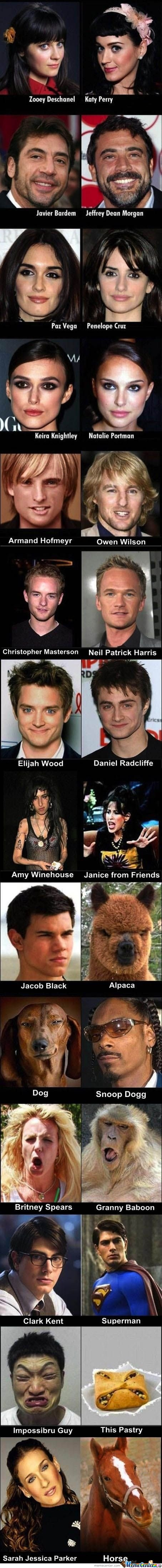 Celebrities Look Alikes