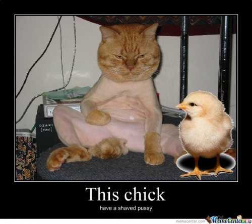 Chick with a shaved pussy