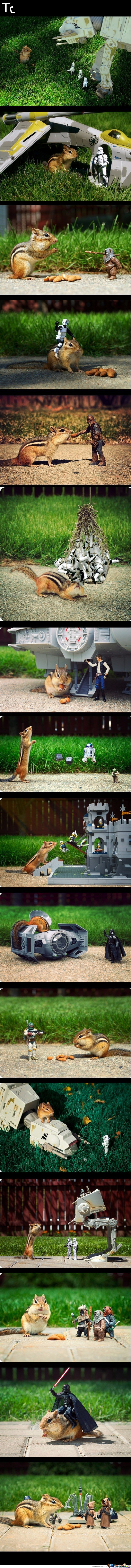 Chipmunk, Meet Star Wars