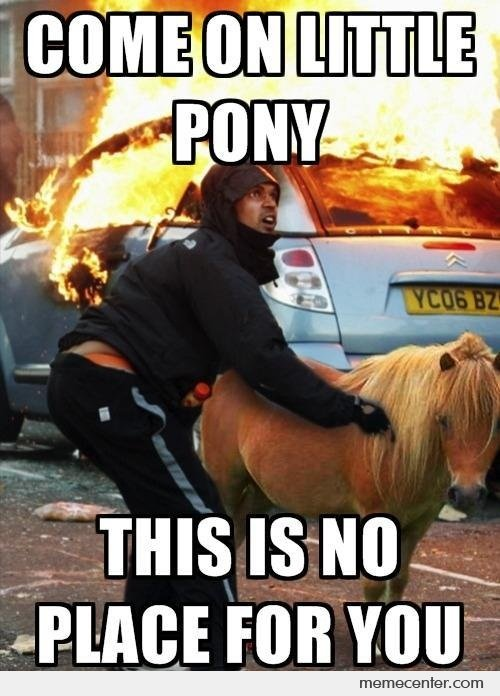 Come On Little Pony