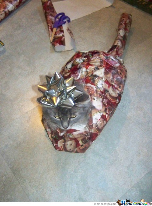 Funny Gift Wrapping Meme : Gifts memes best collection of funny pictures