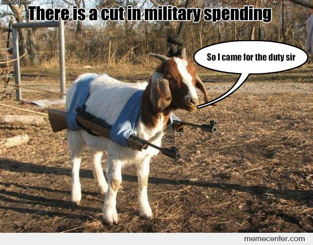 Cut in Military Spending