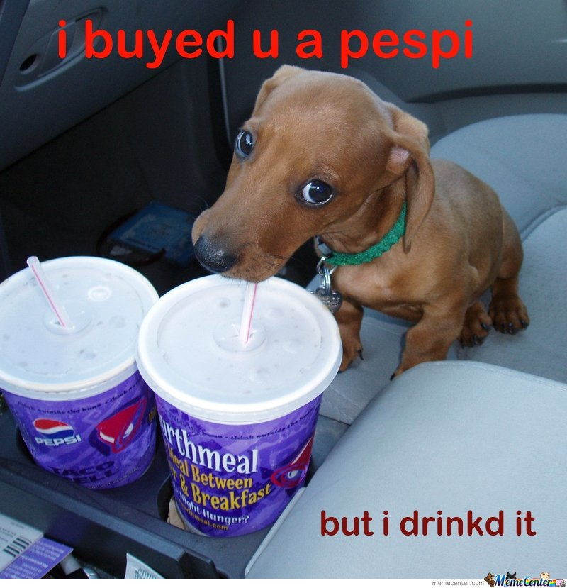 Cute Puppy Bought You a Pepsi
