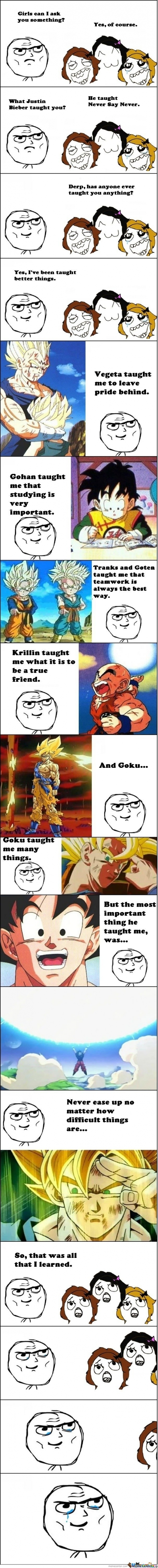 DBZ Rage.Yes I've been tought better thinks.