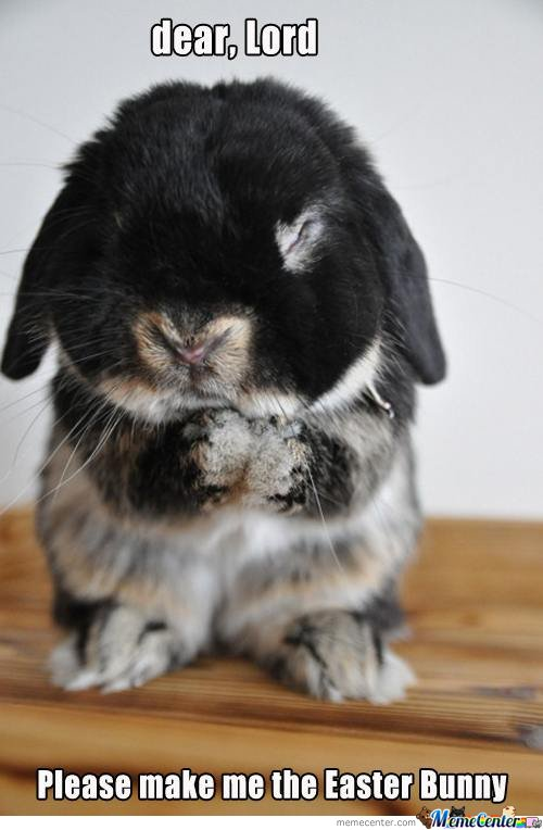 Dear Lord , Please make me the easter bunny
