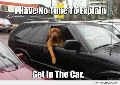Dog: I Have No Time To Explain