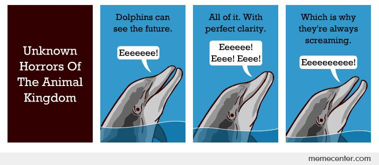 Dolphins can see the future. Thats why they are always screaming