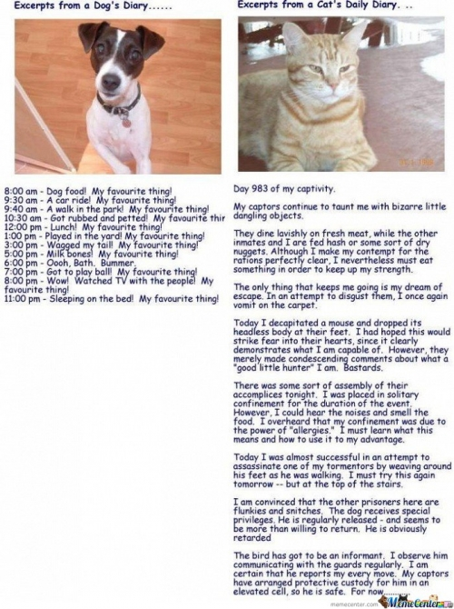 Excerpts From Cat Diary And Dog Diary