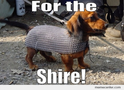 FOR THE SHIRE!