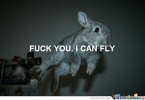 FUCK YOU! I CAN FLY