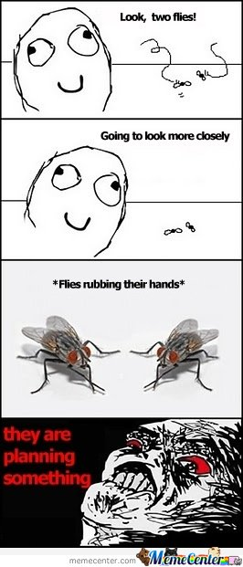 Flies Rubbing Their Hands