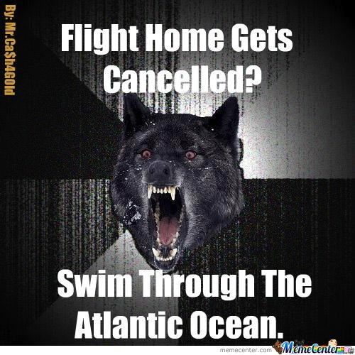 Flight Home Gets Cancelled?
