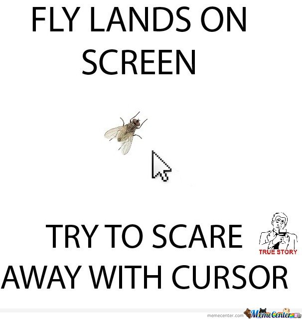 Fly lands on screen? Try to scare away with cursor