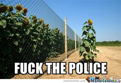 Fuck Da Police Sunflower