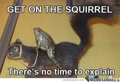 Get On The Squirrel