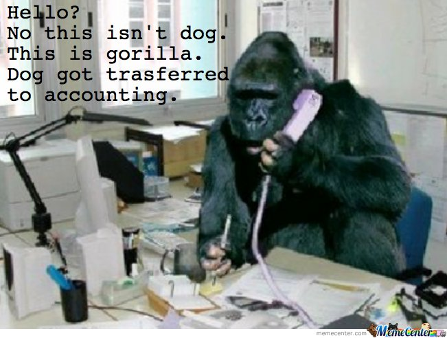 Hello, No this isn't dog. This is gorilla
