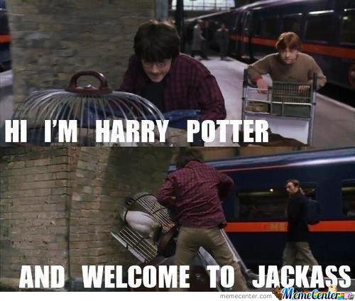 Hi, im harry potter