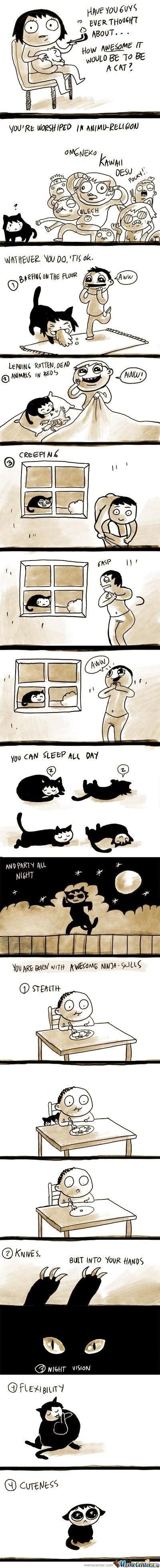 How Awesome It Would Be To Be A Cat