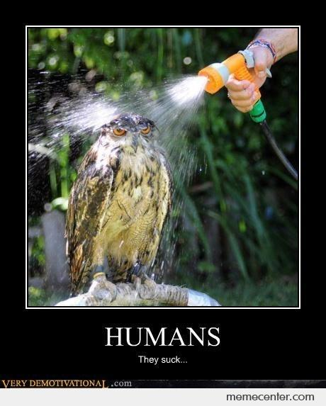 Humans: they suck