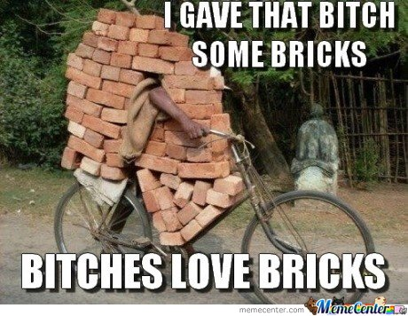 I gave that b*** some bricks