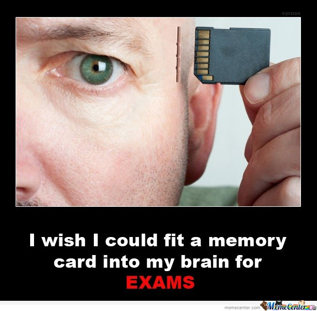 I wish I could fit a memory card into my brain