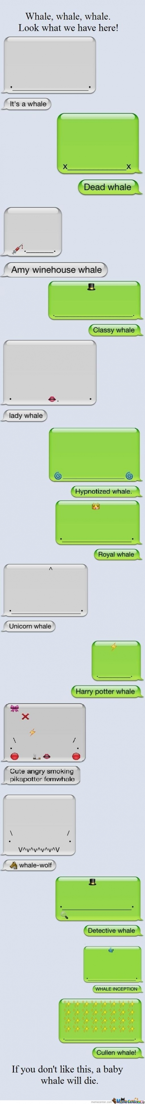 If You Don't Like This Whale, Its Gonna Die!