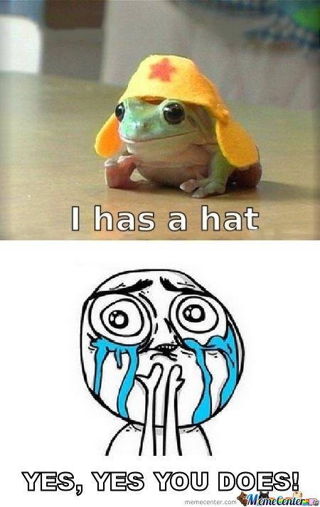 I'm gonna put hats on every animal I see!