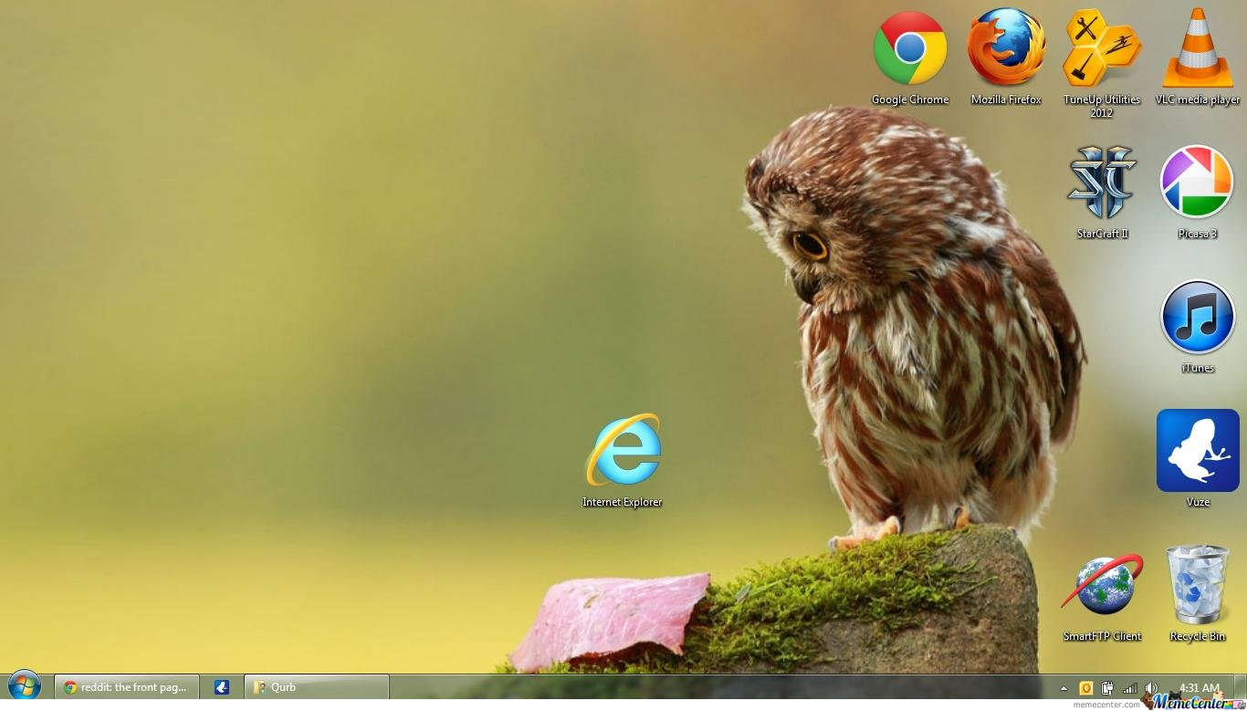 Internet Explorer ? what's it for?