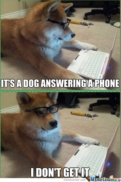 It's a dog answering a phone. I don't get it