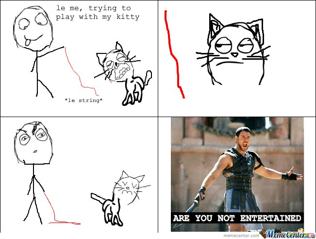 Le me playing with my cat