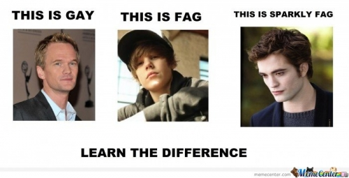 Lets learn the difference between gay & fag & sparkly fag