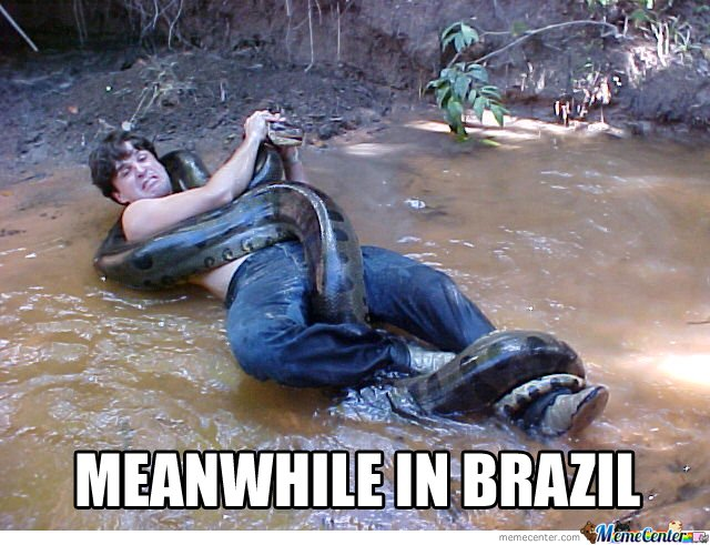 Meanwhile In Brasil