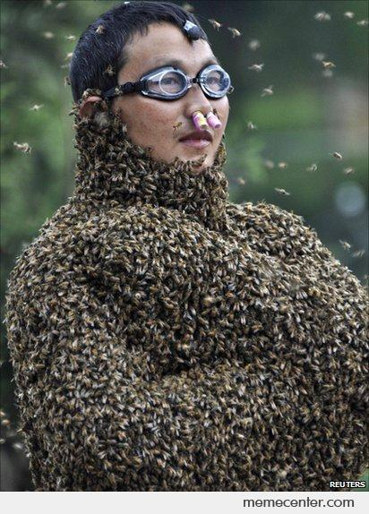 Meanwhile in China: Bee Wearing Contest