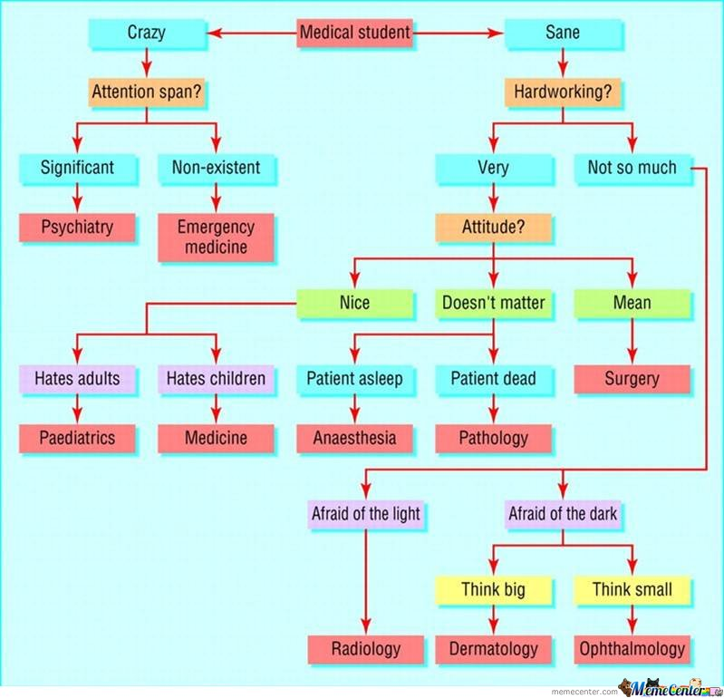Medical Students Chart