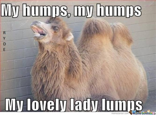 My Humps, My Humps