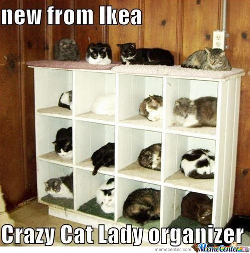 New From IKEA. CRAZY CAT LADY OGANISER