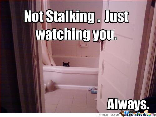 how to follow a stalker