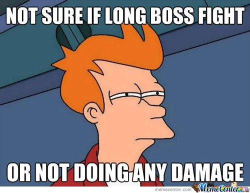 Not Sure If Long Boss Fight