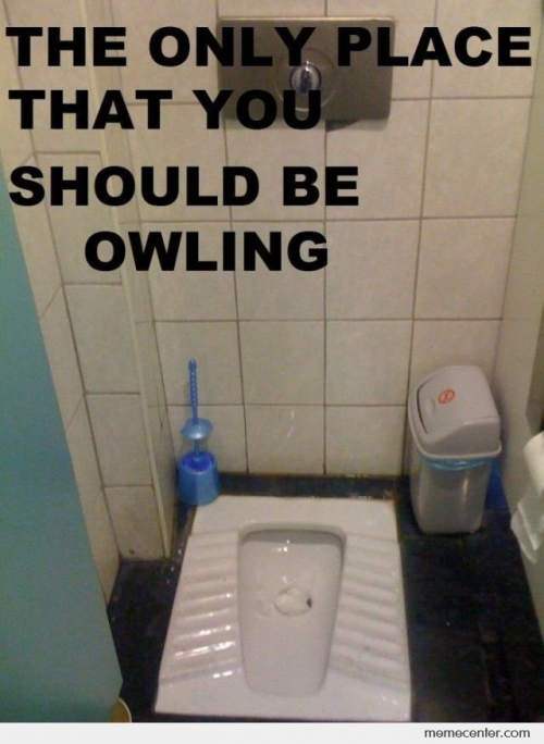 Owling Place