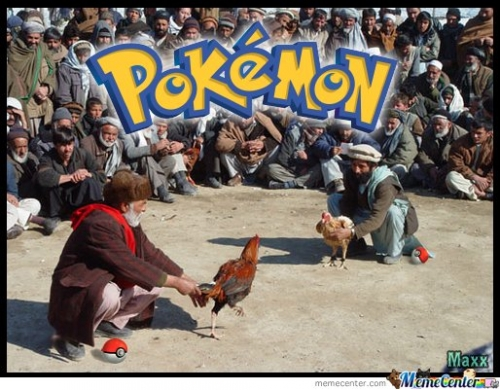 Pokemon Fight!
