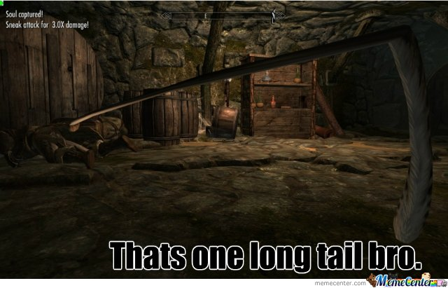 Skyrim tail fail