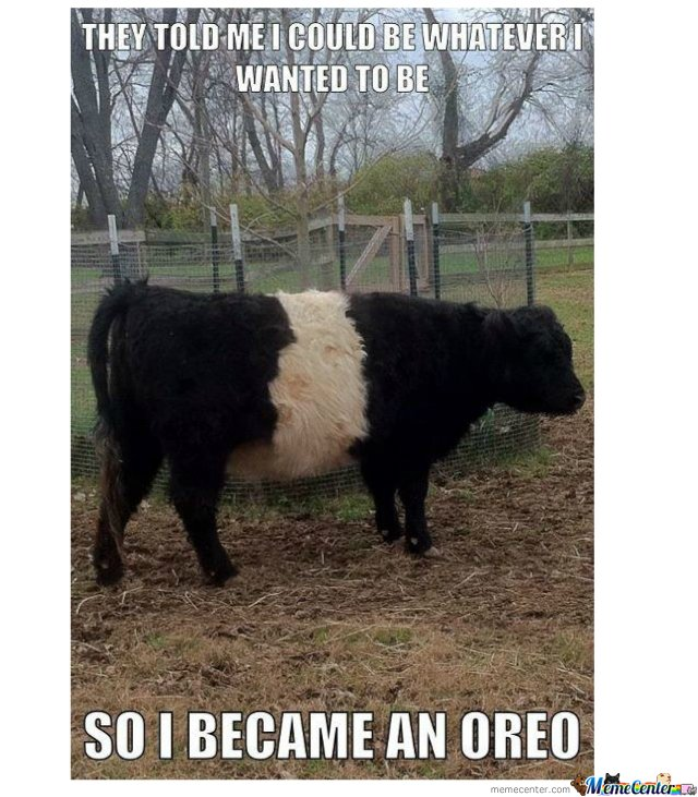 So I became an oreo ...
