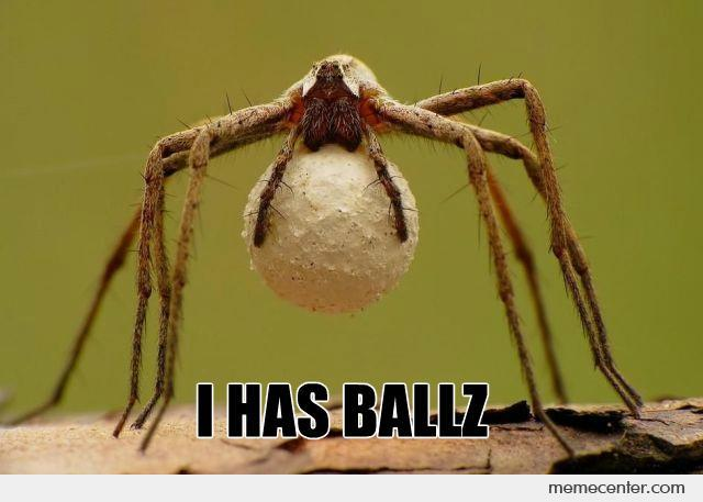 Spider With Balls