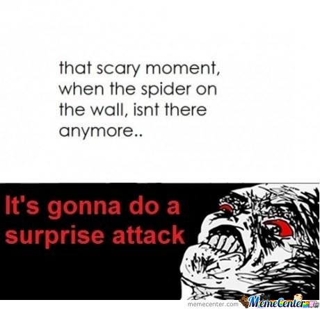 That Scary Moment When The Spider On The Wall, Isn't Anymore